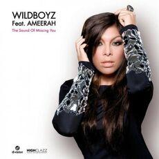 Wildboyz Feat-Ameerah