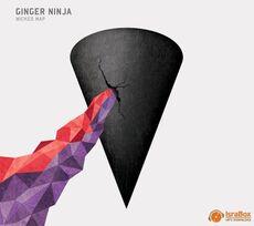 Ginger NinjaSunshine