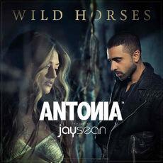 Antonia - jay sean - wild horses