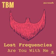 Cover LostFrequencies AreYouWithMe