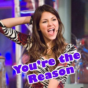 You're The Reason Why