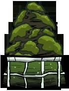 Террариум водорослей