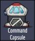 CommandCapsuleIcon