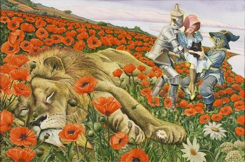 File:Poppies b.jpg