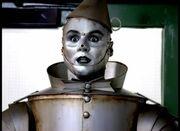 Tin Man Beef Ravioli