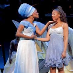 In the 2008 production of <i>The Wiz</i>, Dorothy (played by Ashanti) wears Silver Shoes.