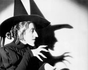 Margaret-hamilton-the-wicked-witch-in-the-wizard-of-oz edit