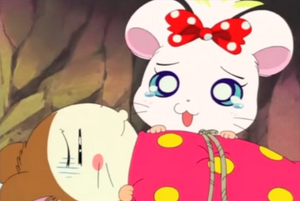 Cute-hamster-anime-hamtaro-39208456-500-335