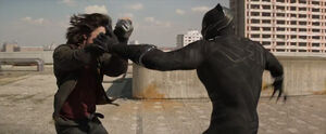 Cw23-winter-soldier-fights-black-panther