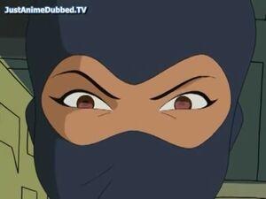Viper mask