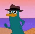 Happy Perry