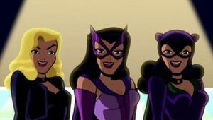 Brave and the Bold Birds of Prey