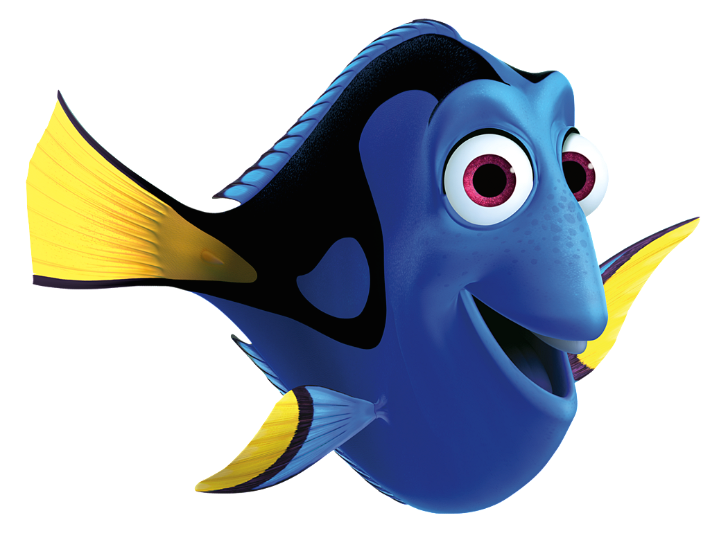 Dory heroes wiki fandom powered by wikia for Picture of dory fish