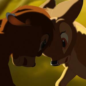Bambi fighting Ronno