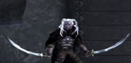 Forgotten Realms - Drizzt Do'Urden defending Mithril Hall from a horde of Ice trolls in the game Demon Stone