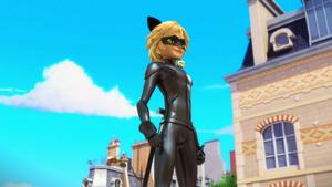 Animan - Cat Noir 22