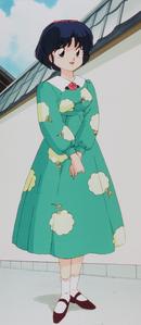Ranma-Tend-Akane-ranma-1-2-39602401-1430-3292