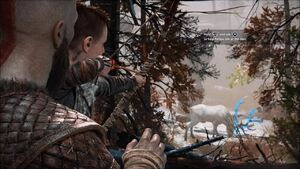 Atreus about to kill a deer