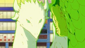 Kanna and Tohru in dragon forms