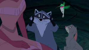 Dizzy Meeko and Flit