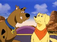 Scooby-doo-and-the-alien-invaders-341920l
