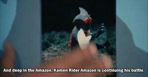 Amazon (JAKQ vs Gorenger)