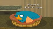 Perry observando de reojo