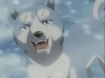 GDW Anime
