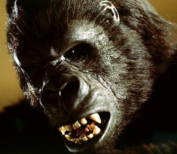 1976/King Kong Lives