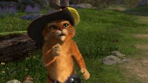 Puss 1