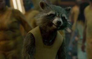 Rocket-raccoon-guardians-of-the-galaxy