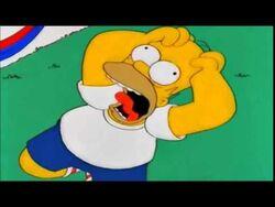 Homer Simpson NOOOO