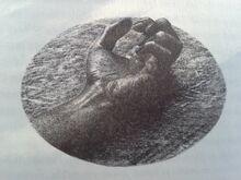 Deceased Bale's hand