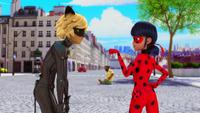 Animan - Cat Noir and Ladybug 47