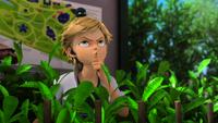 Animan - Plagg and Adrien 00