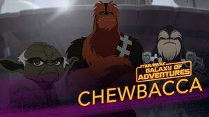 Chewbacca - Wookiee Warrior Star Wars Galaxy of Adventures