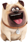 Mel the secret life of pets