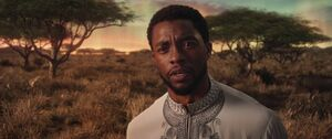 BP - T'Challa (Write out Wrong Doings)