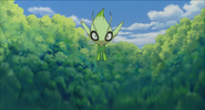 Celebi brainwashed by the Iron Masked Marauder