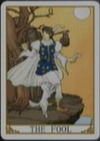 Lucia's Cards, The Fool