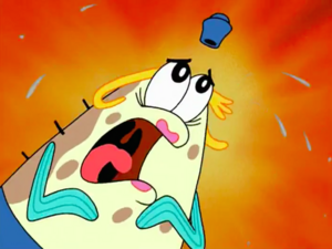 SpongeBob SquarePants - Mrs. Puff Sponge Who Could Fly
