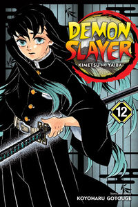 Demon Slayer Volume 12 cover