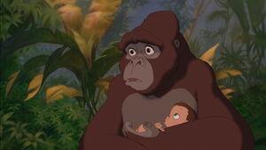 Tarzan-disneyscreencaps.com-1118