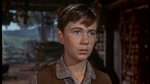 Tommy-Kirk-as-Travis-Coates-in-Old-Yeller-old-yeller-38547123-500-281
