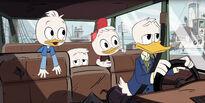 Donald and nephews