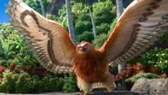 Maui as a giant bird
