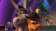Puss & Donkey singing
