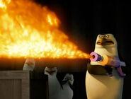 Rico flame
