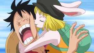 Carrot biting Luffy