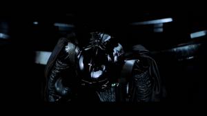 Vader confirms